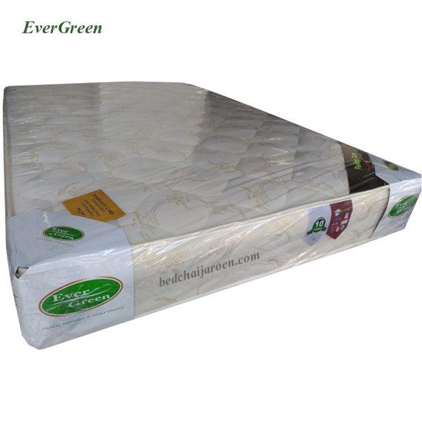 FillingCare-Evergreen-8